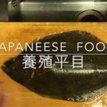 ヒラメさばき方【養殖】japanese  food  washoku
