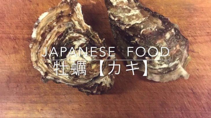 牡蠣の殻の外し方【怪我注意】 japanese  food  washoku