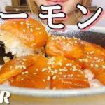 [ASMR 食べるだけ 咀嚼音]Japanese food サーモン丼 飯テロ No talking Eating sounds