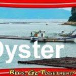【Amazing Japan】Oyster culture / Hiroshima