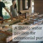 "Experiencing ""Meiji Shrine Sando"" Japanese culture Tokyo (明治神宮 / 東京)"