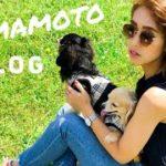 KUMAMOTO VLOG | Ramen, Nature, Japanese Culture 【日本語字幕ON】