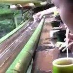 KYOTO KİBUNE japanese food mukbang  yemek japon yemeği ramen