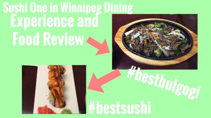 Korean and Japanese Restaurant in Winnipeg Canada Dining Experience and Food Review
