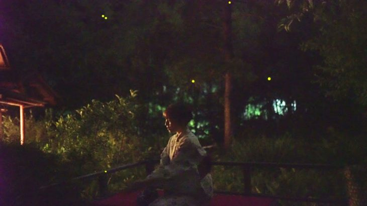 UKAI TORIYAMA Introduction Movie in Summer | Fantastic fireflies | Japanese Food Trip in Tokyo