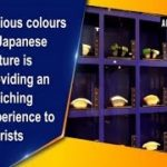 Various colours of Japanese culture is providing an enriching experience to tourists