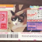 How to Play Wannyan 2656 – Japanese Scratch Lottery