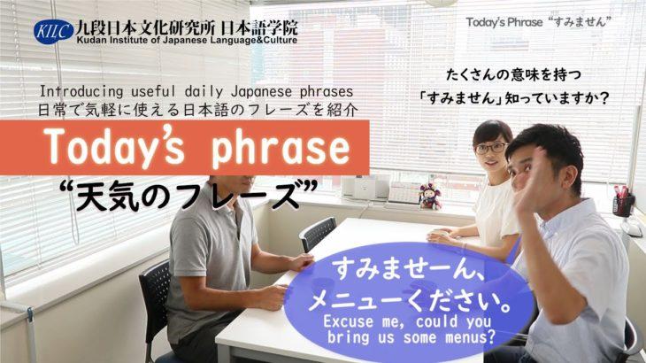 今日のフレーズ(Today's Japanese phrase)「すみません」