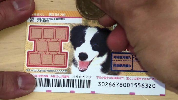 HOW TO PLAY WANNYAN 2667-Japanese Scratch Lottery – I WON!