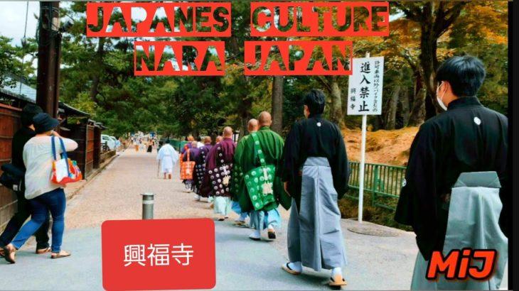 Japanese Culture/興福寺/ 中金堂Nara,Japan/nepali vlogger