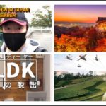 FUN THINGS TO DO IN JAPAN FOR NOVEMBER -LIVE CHAT SUN. NOV. 6, 2020 at 9pm.