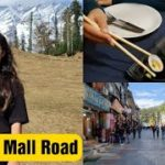 Manali Mall Road || Eating in My Favorite Restaurant || Japanese Food || Jyotika Dilaik