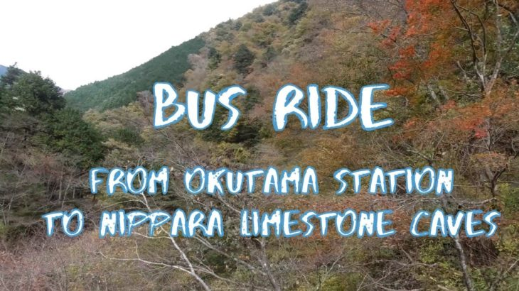 [Vlog] Bus Ride from Okutama Station to Nippara Limestone Caves | Tokyo Sightseeing, Japan