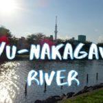 [Vlog] Cycling along Kyu-Nakagawa River | Tokyo Sightseeing, Japan
