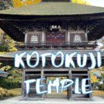 [Vlog] Kotokuji Temple (Akiruno) with Autumn Leaves | Tokyo Sightseeing Japan