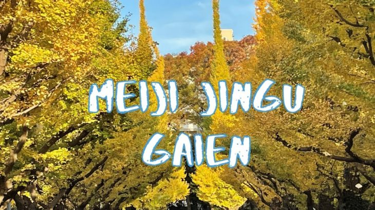 [Vlog] Meiji Jingu Gaien with Autumn Leaves | Tokyo Sightseeing, Japan