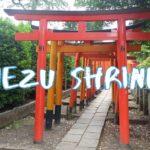[Vlog] Nezu Shrine | Tokyo Sightseeing, Japan
