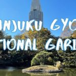 [Vlog] Shinuku Gyoen National Garden with Autumn Leaves | Tokyo Sightseeing, Japan