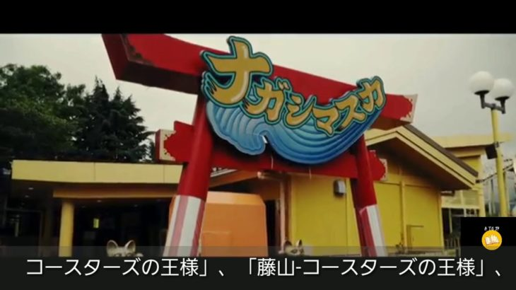 Japan Dolphin Show,Fuji Q Higland,Disneyland