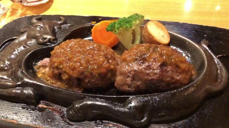 【さわやか ハンバーグ】Japanese food