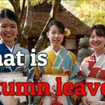 【Japanese travel】Welcome to our free Japanese travel guide. Let's enjoy together