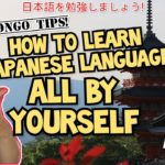 LEARN JAPANESE LANGUAGE ALL BY YOURSELF WITH THIS TIP | Learn Japanese Language by self studying