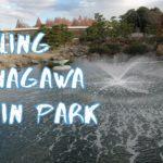 [Vlog] Cycling in Shinagawa Kumin Park with Autumn Leaves   Tokyo Sightseeing, Japan