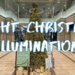 [Vlog] Night Christmas Illumination in Kichijoji Shopping Street   Tokyo Sightseeing, Japan