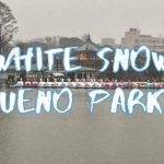 [Vlog] White Snow in Ueno Park | Tokyo Sightseeing, Japan