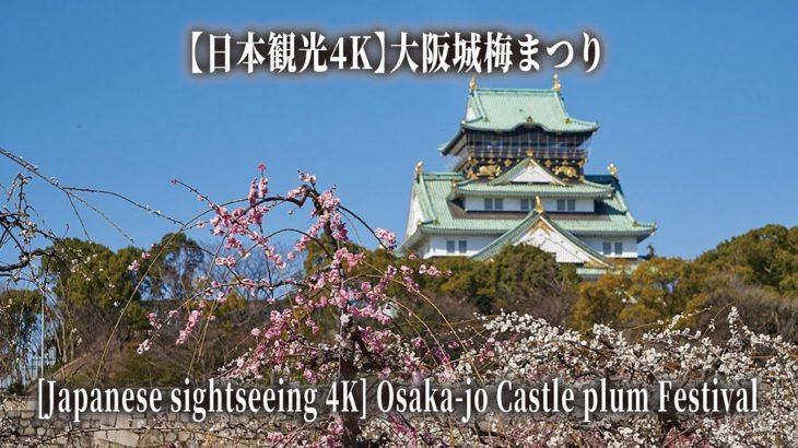 【日本観光4K】大阪城梅まつり [Japanese sightseeing 4K] Osaka-jo Castle plum Festival