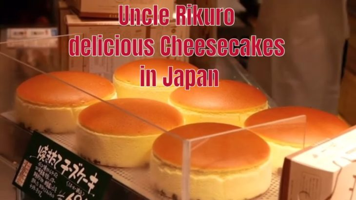JAPAN FOOD || UNCLE RIKURO`S FLUFFIEST CHEESECAKE || OSAKA JAPAN