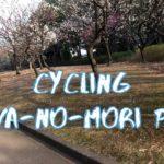 [Vlog] Cycling in Heiwa-no-Mori Park with Japanese Apricots | Tokyo Sightseeing, Japan