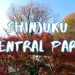 [Vlog] Shinjuku Central Park with Autumn Leaves | Tokyo Sightseeing, Japan