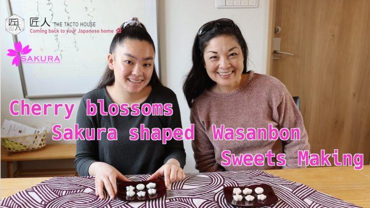 "Cherry blossoms ""Sakura"" shaped wasanbon. SAKURA Experience Japanese Culture"