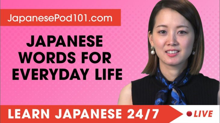 Learn Japanese Live 24/7 🔴 Japanese Words and Expressions for Everyday Life  ✔