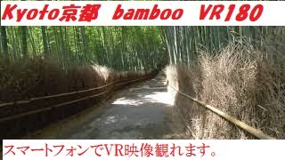 VR180 京都 竹の小径 01(再編集) Japan Kyoto Path of bamboo 3D動画