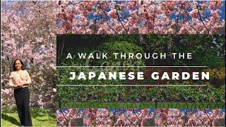 2021 April Walk through the Japanese Garden, Belgium