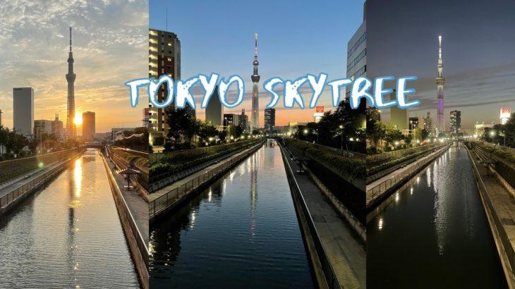 [30X Vlog] Twilight Tokyo Skytree from Fukujinbashi Bridge | Tokyo Sightseeing, Japan