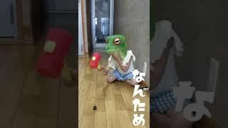 7話 エールvsゴキブリ#JapaneseCulture#ナンタメ#なんため#何の為にもならない