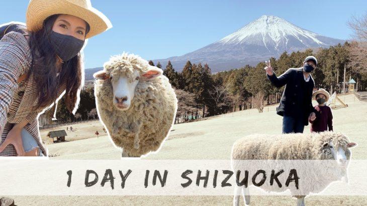 Day trip to Shizuoka, Japan – Food park, Farm, & Shopping Vlog