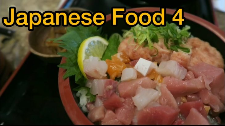 Japanese Food culture vol.4