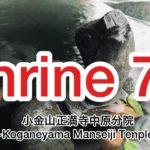 小金山正満寺中原分院 ~Koganeyama Seimanji Temple~ Japanese temple