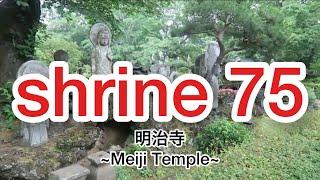 明治寺 ~Meiji Temple~ Japanese temple
