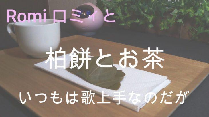 Romi ロミィ と Japanese food 【 柏餅 kashiwamochi 】 A hedge between keeps friendship green.