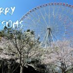 [Vlog] Cycling in Kasai Rinkai Park with Cherry Blossoms | Tokyo Sightseeing, Japan