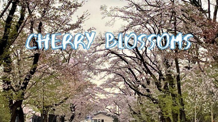 [Vlog] Fujimori Park with Cherry Blossoms | Tokyo Sightseeing, Japan