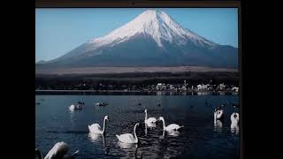 Japanese Culture for Grade 12 – Japanese Geography