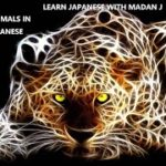 LEARN JAPANESE WITH MADAN J | ANIMALS | JAPANESE