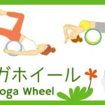 Yoga Wheel – Japanese listening practice