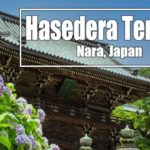 4K Hasedera Temple Nara, Japan. Walk around the area. Let's go sightseeing at Hasedera Temple!!